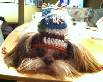 STYLIN STORM hat - for pets - Humorous - 2 to 20 lb pet - need measurement