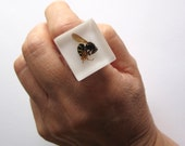 Wasp - Resin ring - Size L