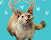 Jackalope Kitty greeting card - 5 pack