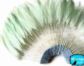 1 Piece - AQUA Half Beaded Pinwheel Stripped Rooster Hackle Feather Pads : 2017 - MoonlightFeatherInc