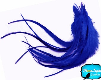 Hair Feathers, 1 Dozen - Medium SOLID ROYAL BLUE Rooster Hair Extension Feathers : 745