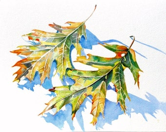 Art Print, Fall Leaves, watercolor painting original art. Leaves, trees, nature. free shipping