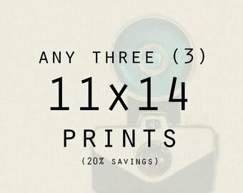 Photography - Any Three (3) 11x14 Metallic Prints
