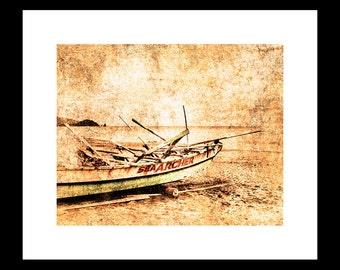 Sea Archer 2 12X16 Fine Art Print