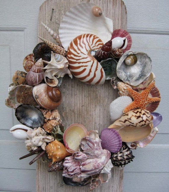 Colorful Shell Wreath (SW37)