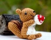 Squirrel Amigurumi