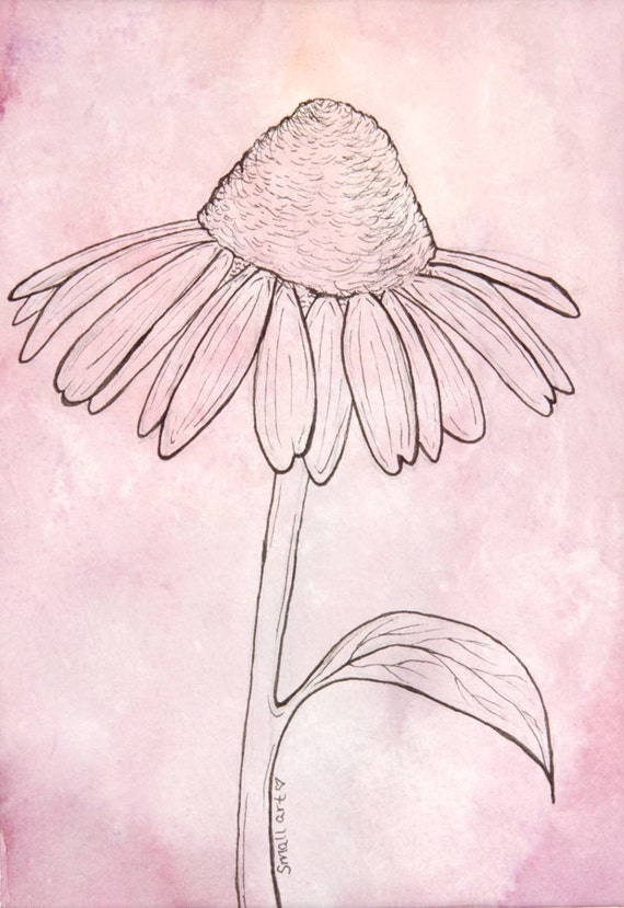 Line Drawing Coneflower : Items similar to purple cone flower line drawing original
