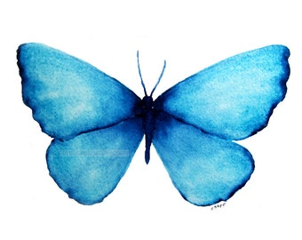 "blue butterfly archival 5"" x 7"" print of watercolor painting"