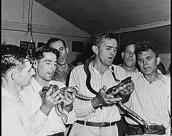 Snake handlers halleluja  8 1/2 x 11 reproduction image vintage view