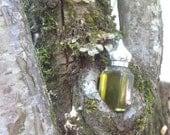 The Holly, Moss & Ivy botanical perfume 1/2 oz