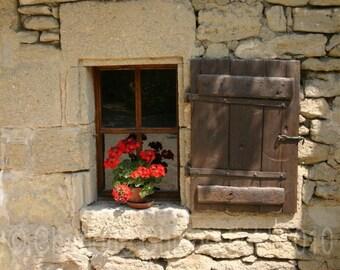 France, Bright Red Geranium photo, Cellar Window Sill, French Art Print, Landscape Photography - Europe - Summer Flower, 8x10, 16x20, 11x14