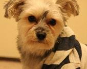 Blue/White Stripe Dog HOODIE