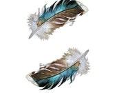 Two Mallard Feathers - Archival Quality Print 8 x 10