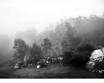 Landcape Photography, Mist, Black, White, Pale Grey, Gothic, Stone, Modern-Play Misty For Me