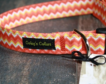 "Dog Collar ""The Reagan"""