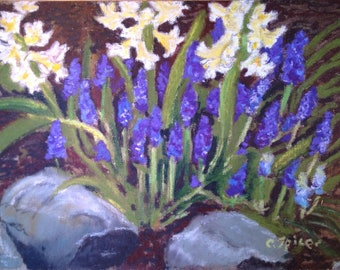 Grape Hyacinth and Crocus