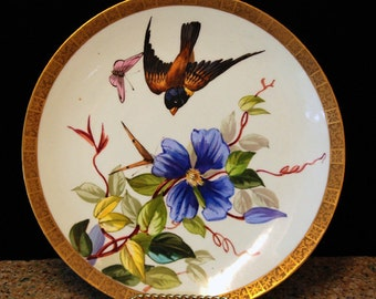 Porcelain Hand Painted Bird Plate