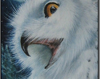 "Aceo Print ""The Call of Winter"" Snowy Owl"