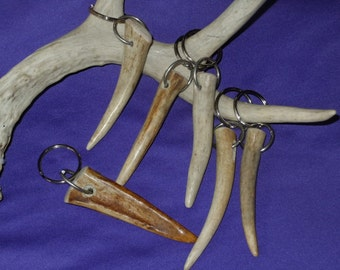 "Genuine Antler Tip Keychain or Zipper Pull, 3""- 4"""