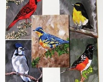 Bird Postcards giclee fine art print (set of 5)