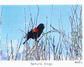 Nature Sings Photo Story Card