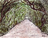 Original Tree Tunnel, Gardens, Italy (6x9) Pen, Ink & Watercolor Drawing by Vista Artworks