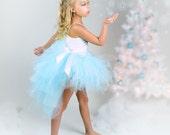 Winter Light Blue Bustle Tutu...Snow Princess Costume, Photo Prop, Birthday Tutu...Infant, Toddler, Girls Sizes. . . ICE PRINCESS