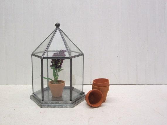 Glass and Metal Display Terrarium Cloche Dome