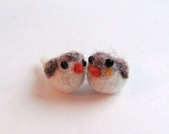 Finch couple