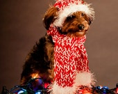 Dog Hat and Dog Scarf for Dog - Red and White - Peppermint
