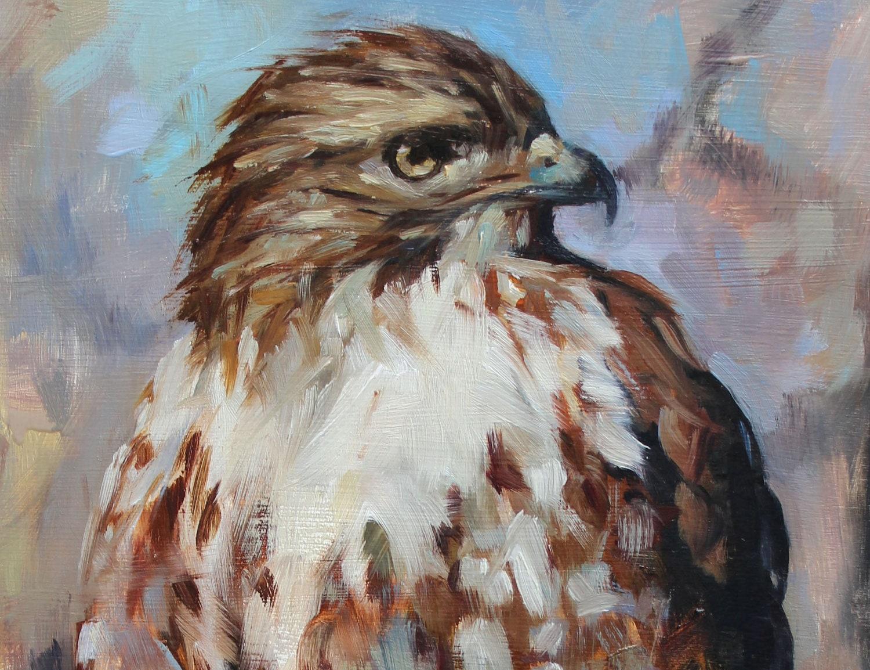 Hawk painting watercolor - photo#36