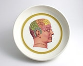 Biology Phrenology Bowl - Anatomy Illustration in White with Chartreuse Stripe