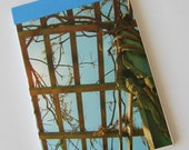 Notebook/Sketchbook/Journal - 4x6 - Grapevine Sky - Original Photograph