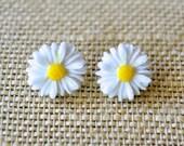 White Daisies . Studs . Earrings