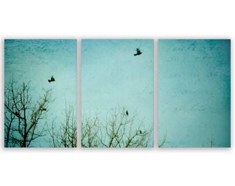 "Teal Home Decor -  teal, turquoise decor, wall art, wall decor, nursery decor - ""Letters of Flight"" - Set of Three Fine Art Photograph"