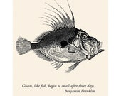 Fish Card Ben Franklin Quote - House Guest Gift Thanks