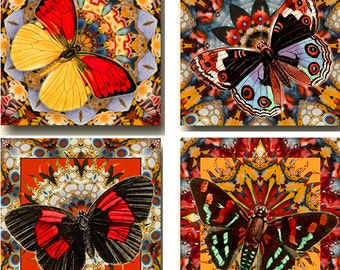 Butterfly Mandala Large 4 Inch Square Instant Download Digital Images Collage Sheet JPEG (12-107)