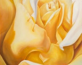 Print Yellow Rose -Gift of the Rose Collection- Open Edition-Timeless- 16x20