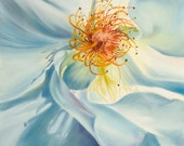 Painting Reproduction-White Rose -Gift of the Rose Collection- Open Edition-Humility- 8x10