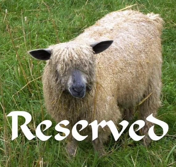 Handspun art yarn: Wensleydale and Teeswater, 28 m- 30 yards, 3.8 oz, 100 % wool, reserved for Marian