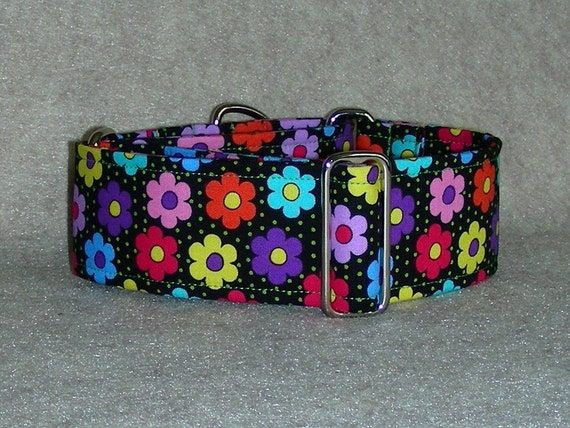 2 inch Martingale Dog Collar Flowers on Black