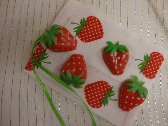 VTG Strawberry Magnets in Matching Fabric Gift Bag
