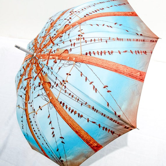 Photo Umbrella Blue Birds on Wires -Turquoise Brown