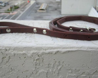 Dog Paws Leather Leash