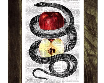 Summer Sale Red Temptation snake and apple Print on Vintage Dictionary Book page art ANI202