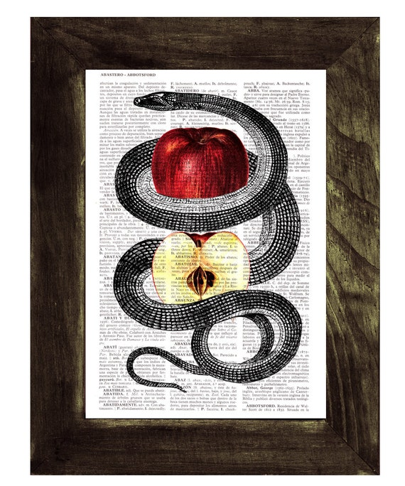 Red Temptation snake and apple Print on Vintage Dictionary Book page art ANI202b