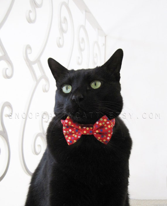Cat Bow Tie - Choose Your Own (Cotton Prints)