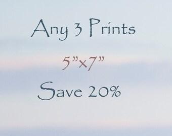 "20% Off Any Three 5""x7"" Fine Art Horse Prints, photographs"