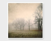Fog Photo, trees, nature print, nature photo, foggy landscape, fine art photography, olive green, rustic home decor, green, foggy, landscap