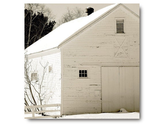 WHITE BARN photo, large print,rustic, farm, farmhouse chic, white barn in the snow, country living, home decor, vanilla, beige